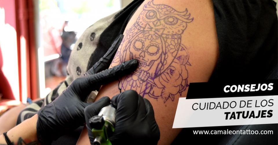 Cuidado De Los Tatuajes Camaleon Tattoo